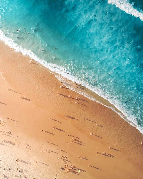 خلفيات طبيعية ساحرة صور خلفيات النخيل والجليد والشاطئ